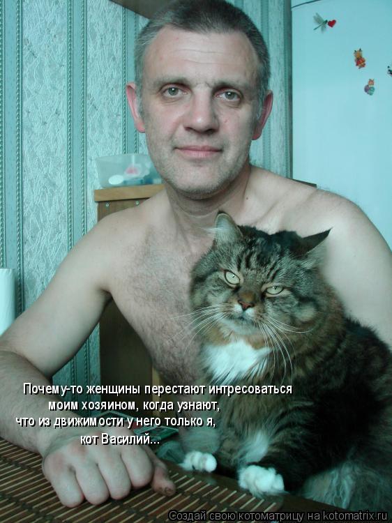 Котоматрица: Почему-то женщины перестают интресоваться моим хозяином, когда узнают,  что из движимости у него только я, кот Василий...
