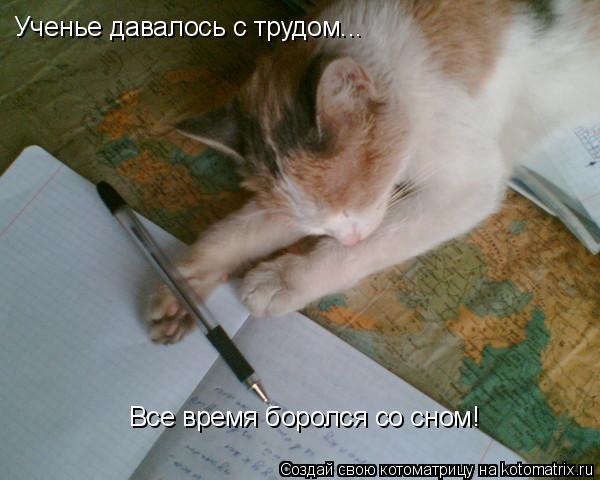Котоматрица: Ученье давалось с трудом... Все время боролся со сном!