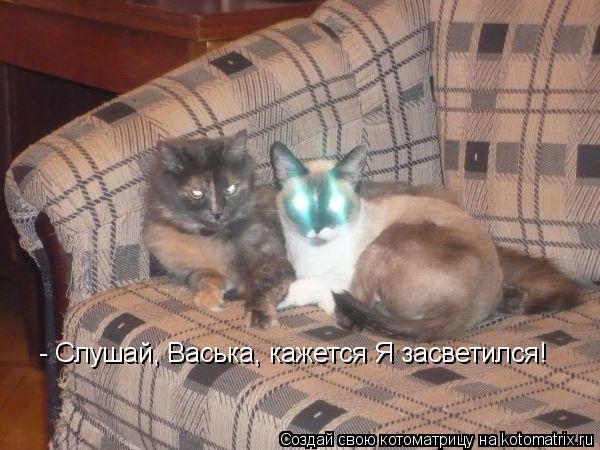 Котоматрица: - Слушай, Васька, кажется Я засветился!