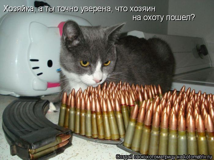 Котоматрица: Хозяйка, а ты точно уверена, что хозяин на охоту пошел?