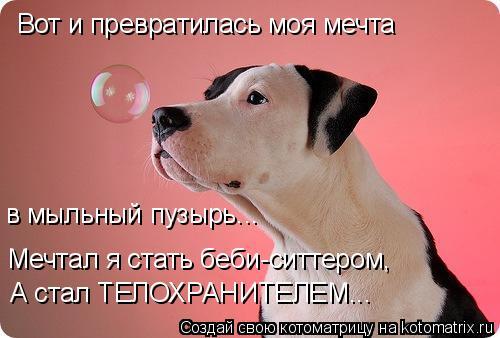 Котоматрица: Вот и превратилась моя мечта в мыльный пузырь... Мечтал я стать беби-ситтером, А стал ТЕЛОХРАНИТЕЛЕМ...