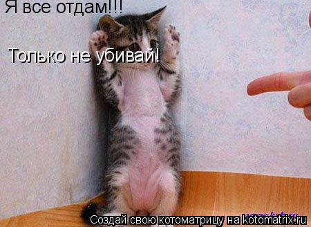 Котоматрица: Я все отдам!!! Только не убивай!