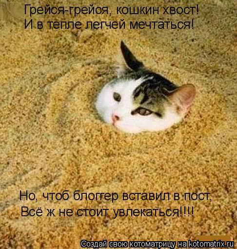 Котоматрица: Грейся-грейся, кошкин хвост! И в тепле легчей мечтаться! Но, чтоб блоггер вставил в пост, Всё ж не стоит увлекаться!!!!