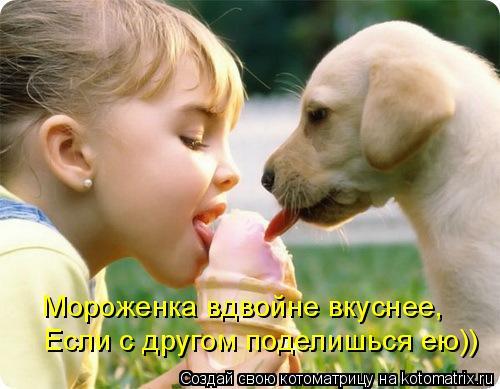 Котоматрица: Мороженка вдвойне вкуснее, Если с другом поделишься ею))