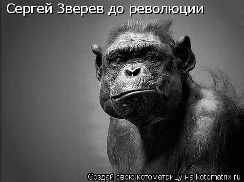 Котоматрица: Сергей Зверев до революции