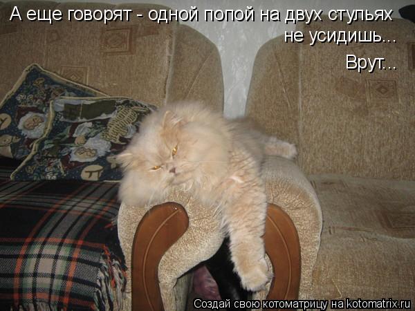 Котоматрица: А еще говорят - одной попой на двух стульях не усидишь... Врут...