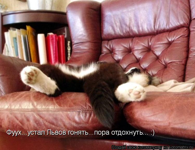 Котоматрица: Фуух...устал Львов гонять...пора отдохнуть... :)