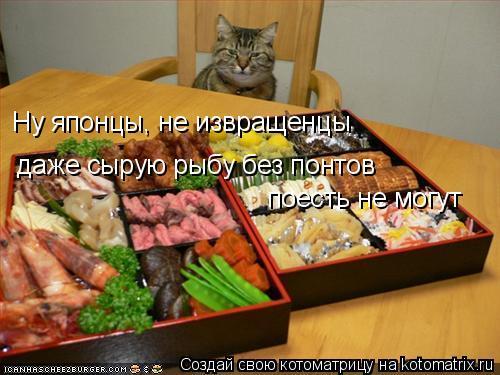 Котоматрица: Ну японцы, не извращенцы даже сырую рыбу без понтов поесть не могут