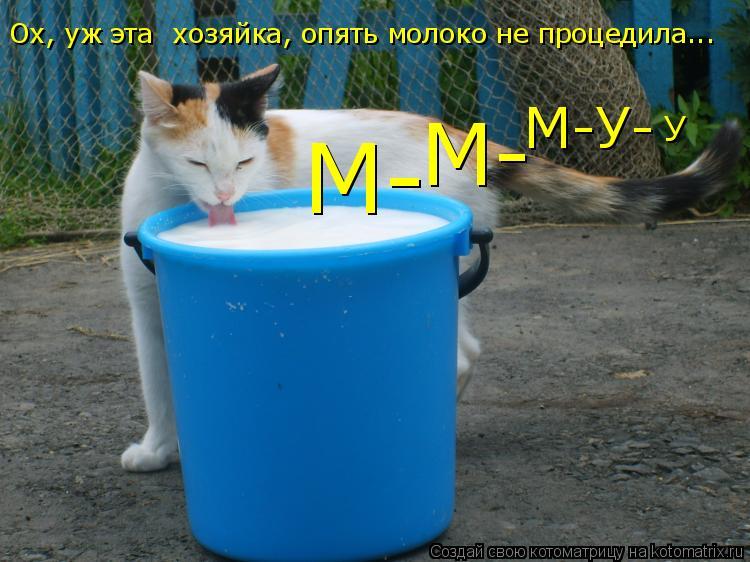Котоматрица: М- М- М-У- У Ох, уж эта  хозяйка, опять молоко не процедила...