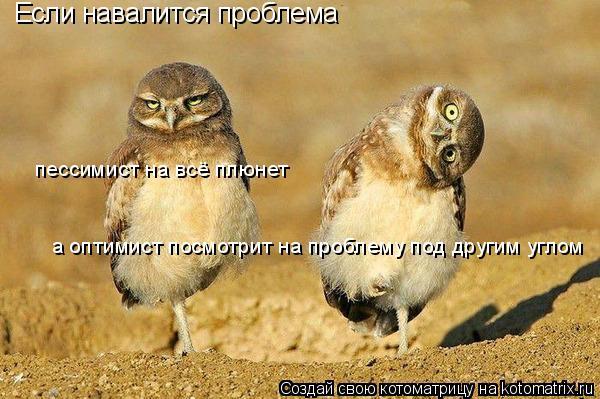 Котоматрица: Если навалится проблема пессимист на всё плюнет а оптимист посмотрит на проблему под другим углом