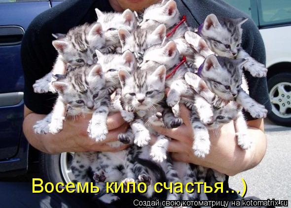 Котоматрица: Восемь кило счастья...)