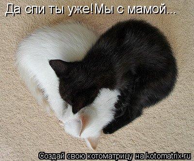 Котоматрица: Да спи ты уже!Мы с мамой...