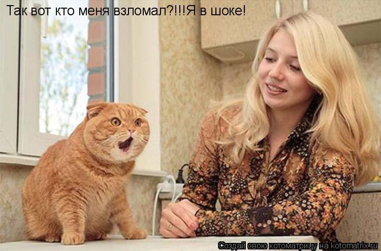 Котоматрица: Так вот кто меня взломал?!!!Я в шоке!