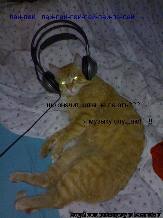 Котоматрица: лай-лай...лай-лай-лай-лай-лай-ла-лай........... шо значит коты не лаютъ??? я музыку слушаю!!!!!!