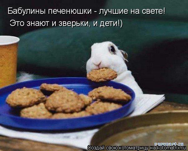 Котоматрица: Бабулины печенюшки - лучшие на свете! Это знают и зверьки, и дети!)