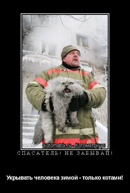 Котоматрица: Спасатель! Не забывай! Укрывать человека зимой - только котами!