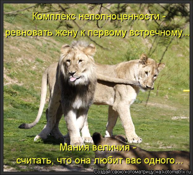 Котоматрица: ревновать жену к первому встречному... Комплекс неполноценности - Мания величия - считать, что она любит вас одного...