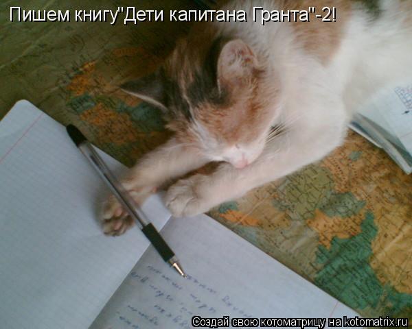 """Котоматрица: Пишем книгу""""Дети капитана Гранта""""-2!"""