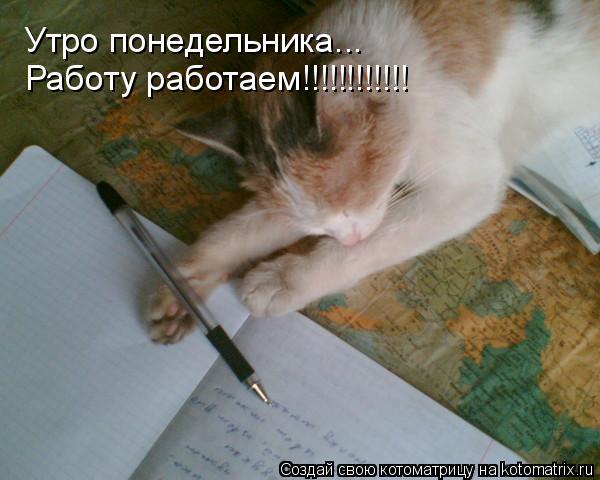 Котоматрица: Утро понедельника... Работу работаем!!!!!!!!!!!!