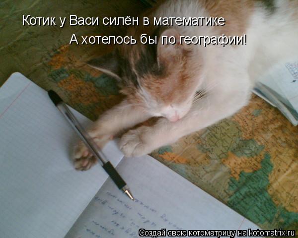 Котоматрица: Котик у Васи силён в математике А хотелось бы по географии!