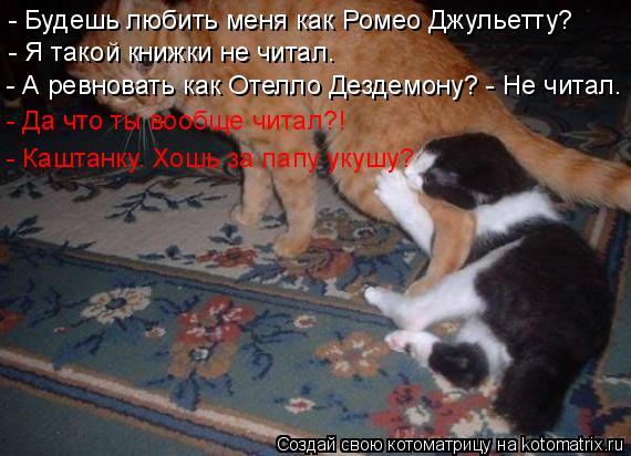 Котоматрица: - Будешь любить меня как Ромео Джульетту? - Я такой книжки не читал. - А ревновать как Отелло Дездемону? - Не читал. - Да что ты вообще читал?! - Ка