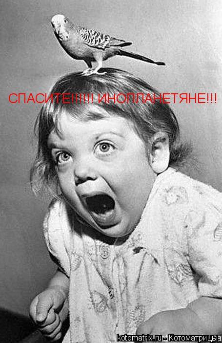 Котоматрица: СПАСИТЕ!!!!!! ИНОПЛАНЕТЯНЕ!!!
