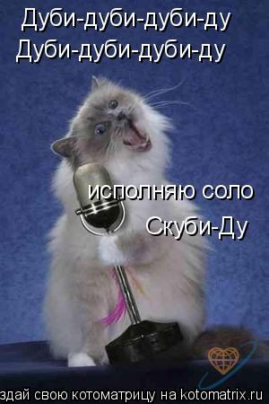 Котоматрица: Дуби-дуби-дуби-ду Дуби-дуби-дуби-ду исполняю соло  Скуби-Ду
