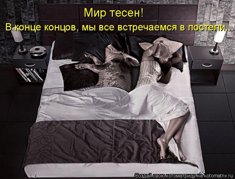 Котоматрица: В конце концов, мы все встречаемся в постели... Мир тесен!