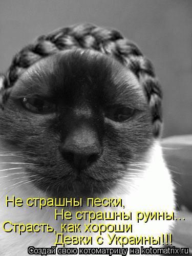 Котоматрица: Не страшны пески, Не страшны руины... Страсть, как хороши Девки с Украины!!!