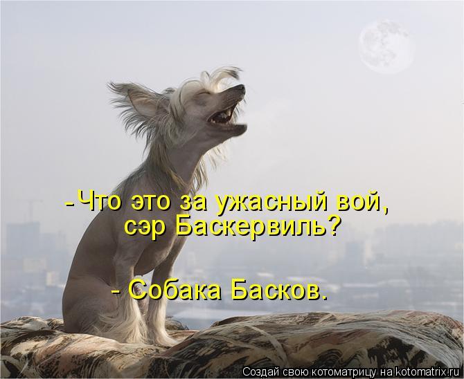 Котоматрица: Что это за ужасный вой, сэр Баскервиль? - Собака Басков. -