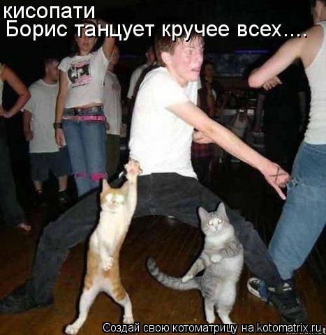 Котоматрица: кисопати Борис танцует кручее всех....
