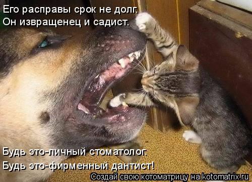 Котоматрица: Его расправы срок не долг. Он извращенец и садист. Будь это-личный стоматолог. Будь это-фирменный дантист!