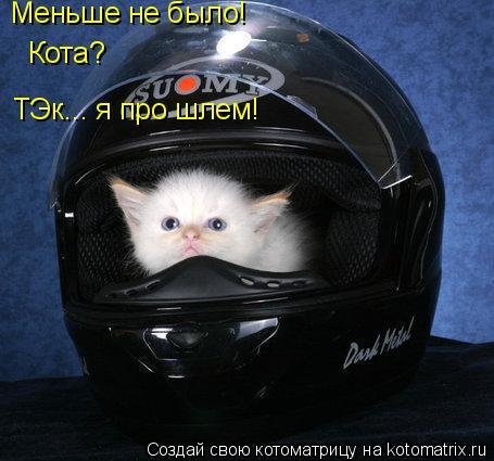 Котоматрица: Меньше не было! ТЭк... я про шлем! Кота?