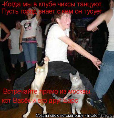 Котоматрица: -Когда мы в клубе чиксы танцуют.  Пусть город знает с кем он тусует. Встречайте прямо из москвы,  кот Васёк и его друг Барс