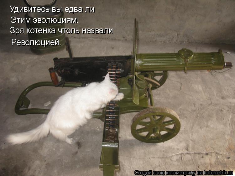 Котоматрица: Удивитесь вы едва ли Этим эволюциям. Зря котенка чтоль назвали Революцией.