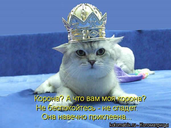 Котоматрица: Корона? А что вам моя корона? Не беспокойтесь - не спадет. Она навечно приклеена...