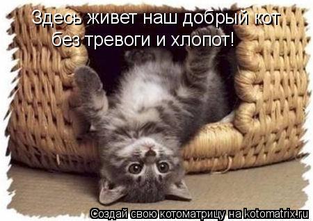Котоматрица: Здесь живет наш добрый кот без тревоги и хлопот!