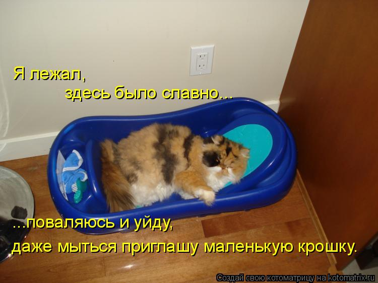 Котоматрица: Я лежал, здесь было славно... ...поваляюсь и уйду, даже мыться приглашу маленькую крошку.