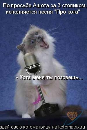 """Котоматрица: По просьбе Ашота за 3 столиком,  исполняется песня """"Про кота"""" - Кота меня ты позовешь..."""