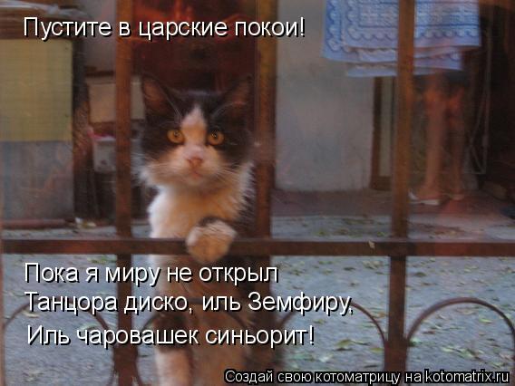 Котоматрица: Пустите в царские покои! Пока я миру не открыл Танцора диско, иль Земфиру, Иль чаровашек синьорит!