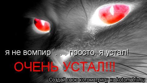 Котоматрица: я не вомпир  . . . просто, я устал! ОЧЕНЬ УСТАЛ!!!