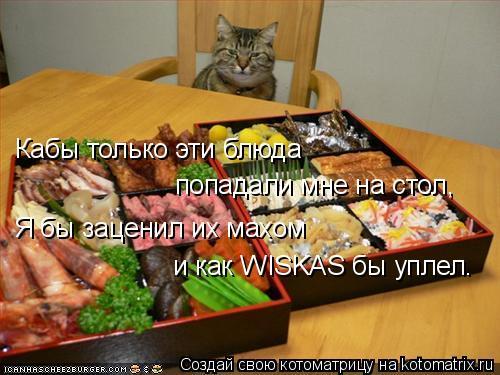 Котоматрица: Кабы только эти блюда  попадали мне на стол, Я бы заценил их махом и как WISKAS бы уплел.