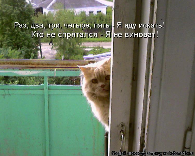 Котоматрица: Раз, два, три, четыре, пять - Я иду искать! Кто не спрятался - Я не виноват!