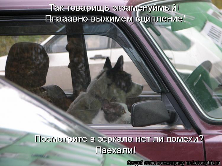 Котоматрица: Так,товарищь экзаменуймый! Плааавно выжимем сципление! Посмотрите в зеркало нет ли помехи? Паехали!