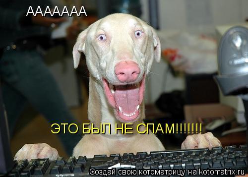 Котоматрица: ААААААА  ЭТО БЫЛ НЕ СПАМ!!!!!!!