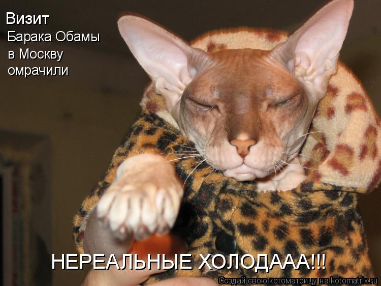 Котоматрица: Барака Обамы Визит в Москву омрачили НЕРЕАЛЬНЫЕ ХОЛОДААА!!!