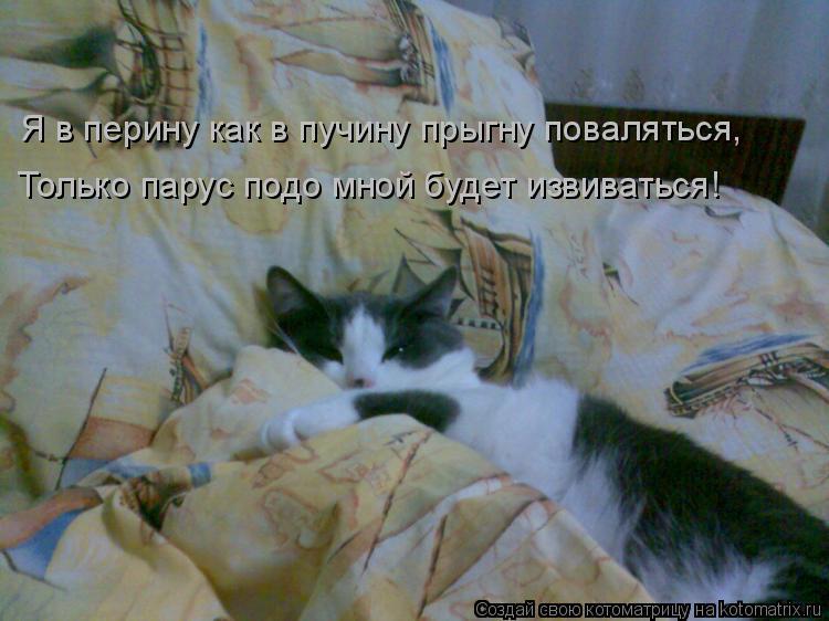 Котоматрица: Я в перину как в пучину прыгну поваляться, Только парус подо мной будет извиваться!
