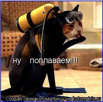 Котоматрица: ну    поплаваем!!!