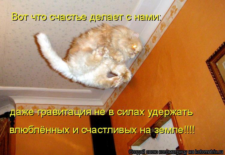 Котоматрица: Вот что счастье делает с нами: даже гравитация не в силах удержать  влюблённых и счастливых на земле!!!!