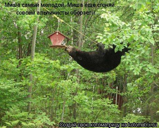 Котоматрица: Миша самый молодой, Миша еще сгоняй.... совсем альпинисты оборзели...